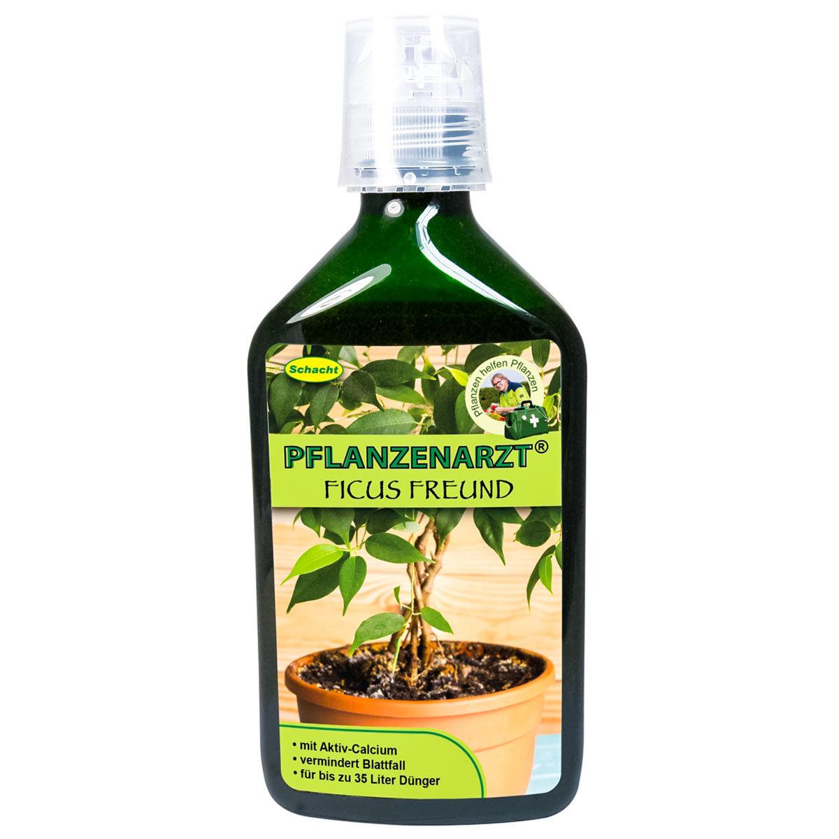 Ficus Freund, 350 ml
