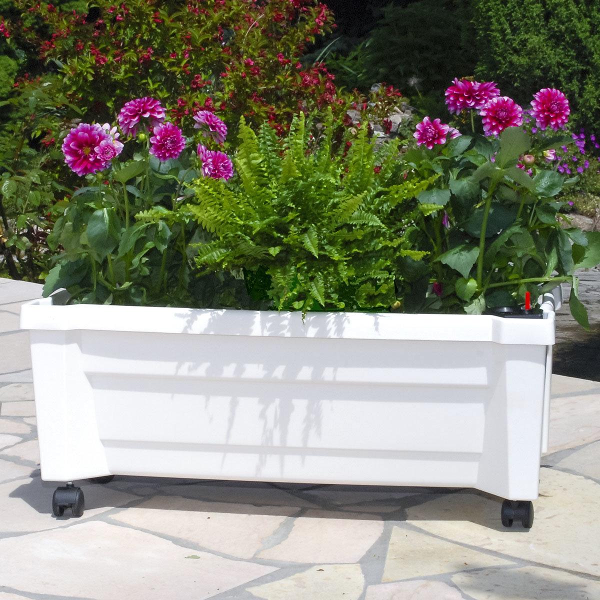Pflanzkasten mit Bewässerungssystem und modularem Spaliere, weiß