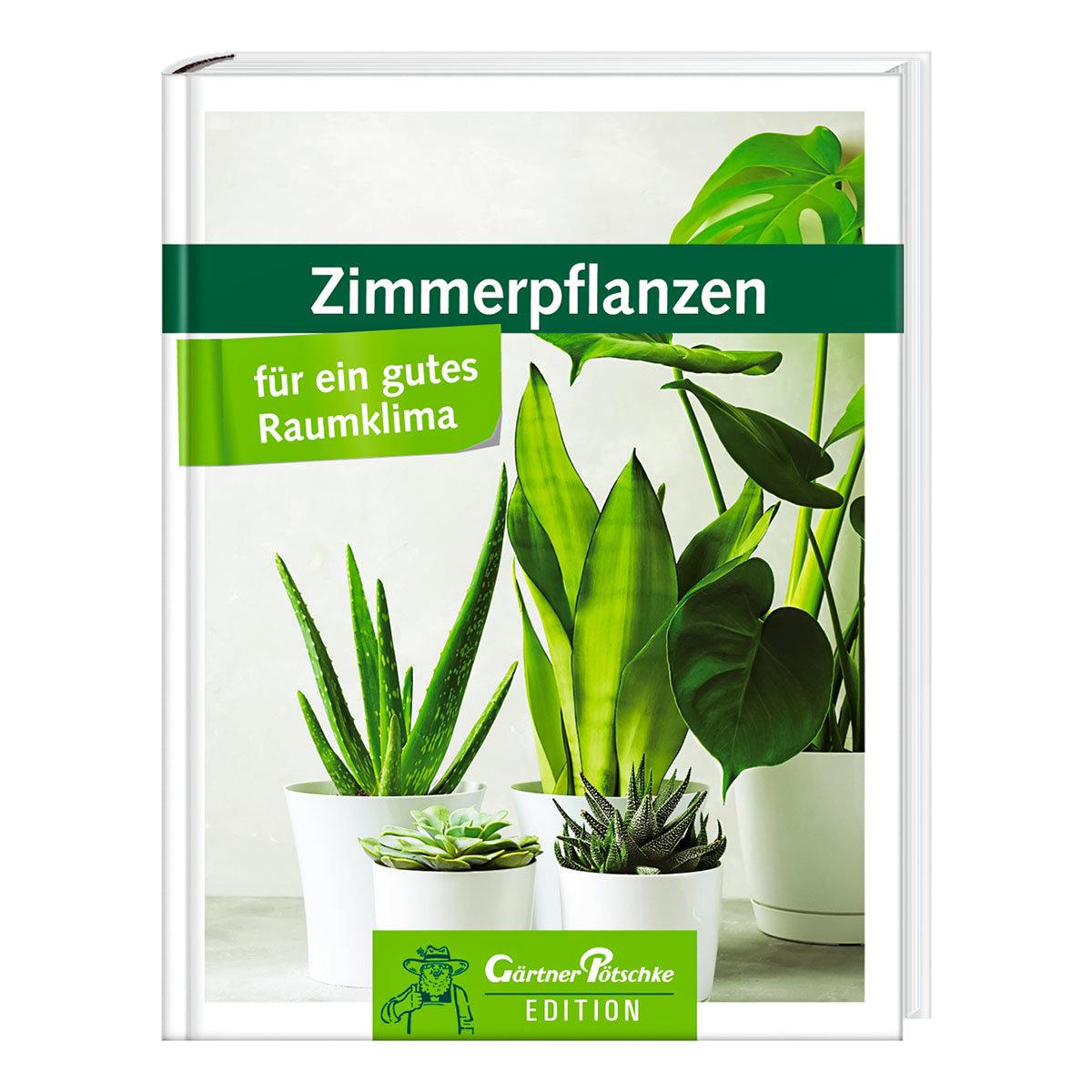 Zimmerpflanzen für ein gutes Raumklima