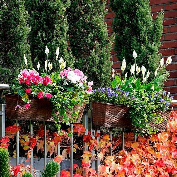 Outdoor-Rattan-Balkonkasten mit Zubehör