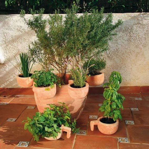 Kräutertopf Provence