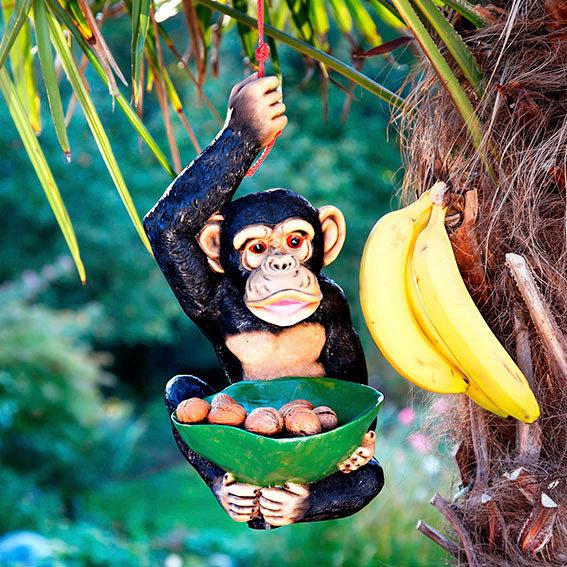 Vogelfutterstelle Schimpanse