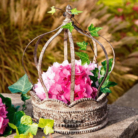 Pflanzen-Krone Corona