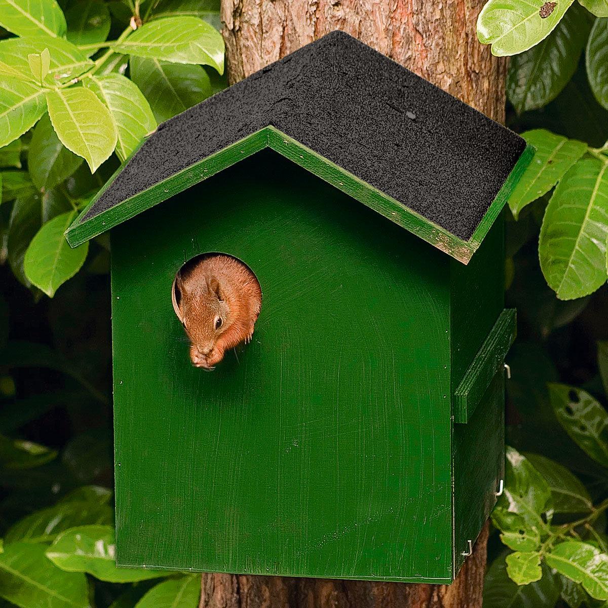 Eichhörnchen-Kobel