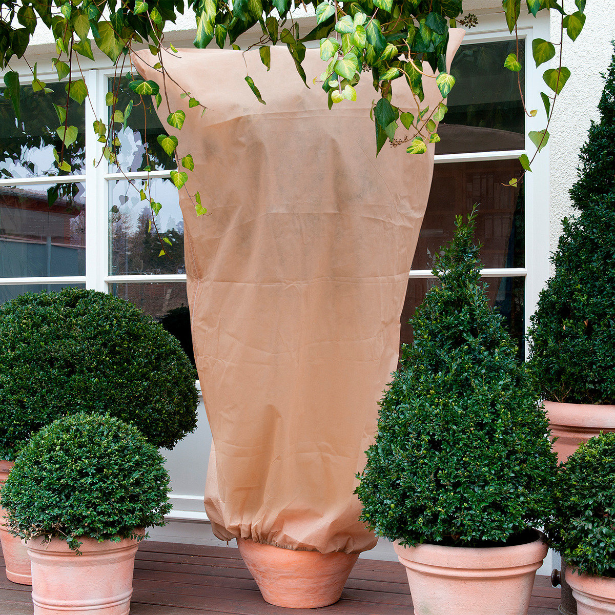 Kübelpflanzen-Sack, S, 2er-Set