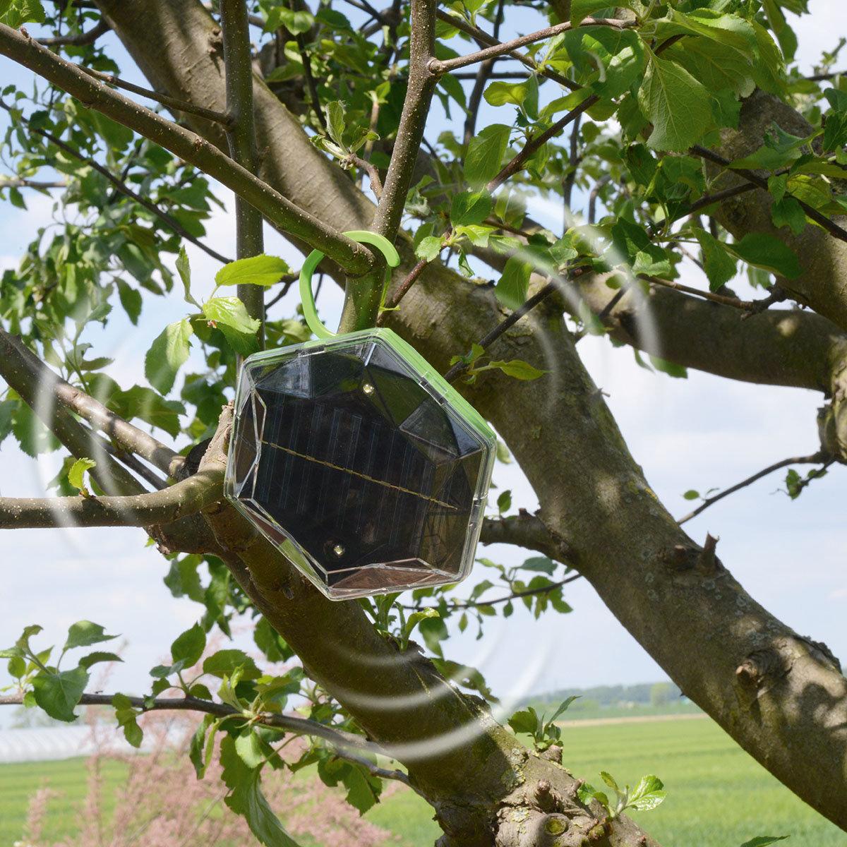 Solar Vogel-Abwehr