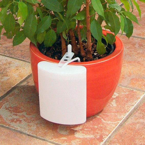 Pflanzenbewässerer, 2er-Set