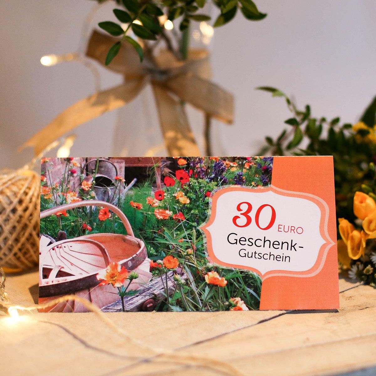 30 euro g rtner p tschkes geschenk gutschein online kaufen bei g rtner p tschke. Black Bedroom Furniture Sets. Home Design Ideas