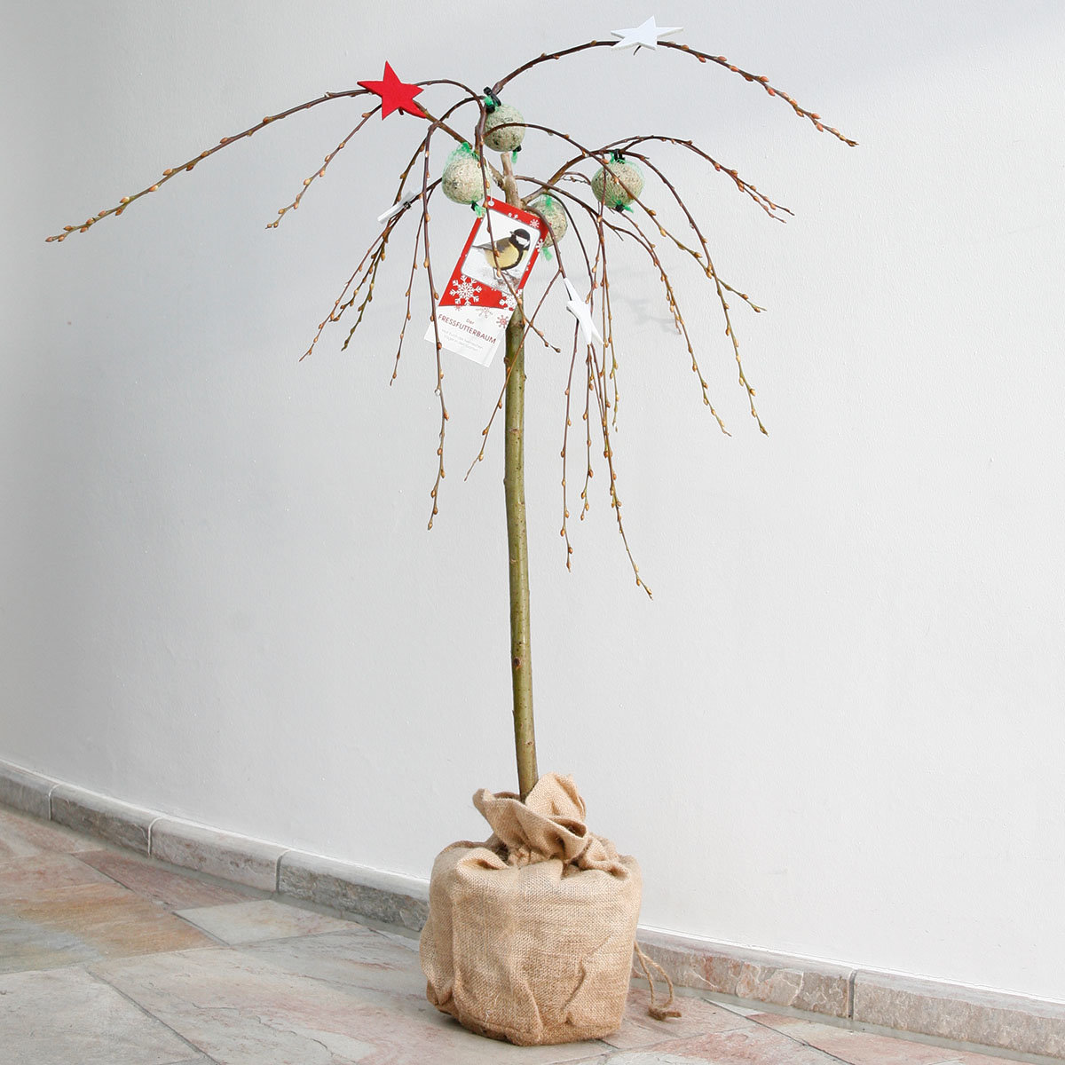 Vogelfutterbaum, im ca. 23 cm-Topf | #11