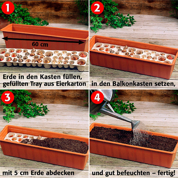 balkon tray bunte fr hlingspracht von g rtner p tschke. Black Bedroom Furniture Sets. Home Design Ideas