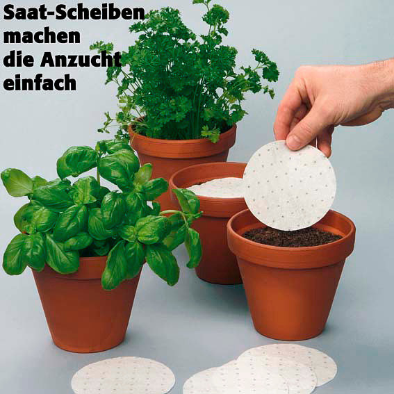 Saatscheiben Schnittlauch Twiggy 10 cm Durchmesser | #2