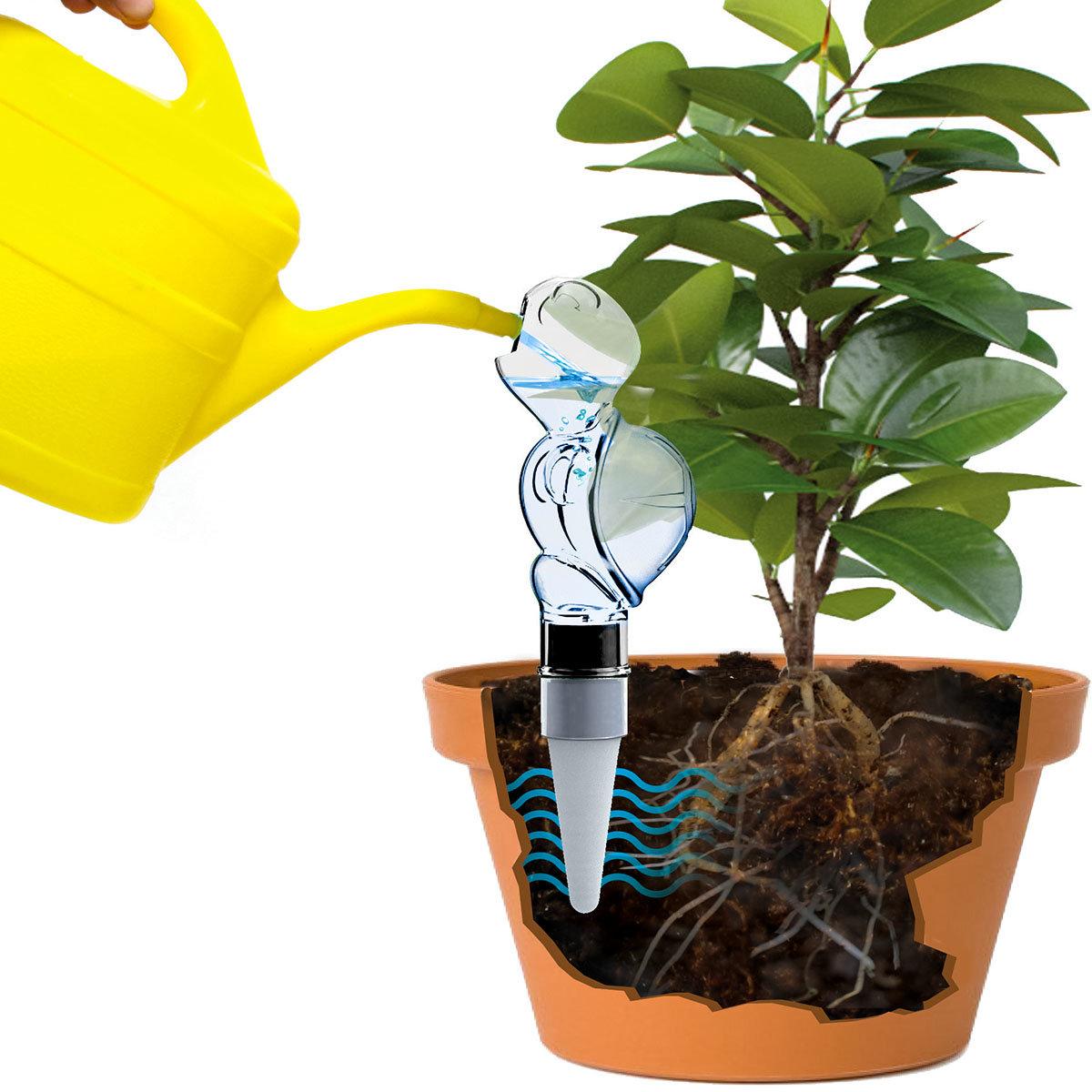 Bewässerungs-Schildkröte Paula Panza | #2