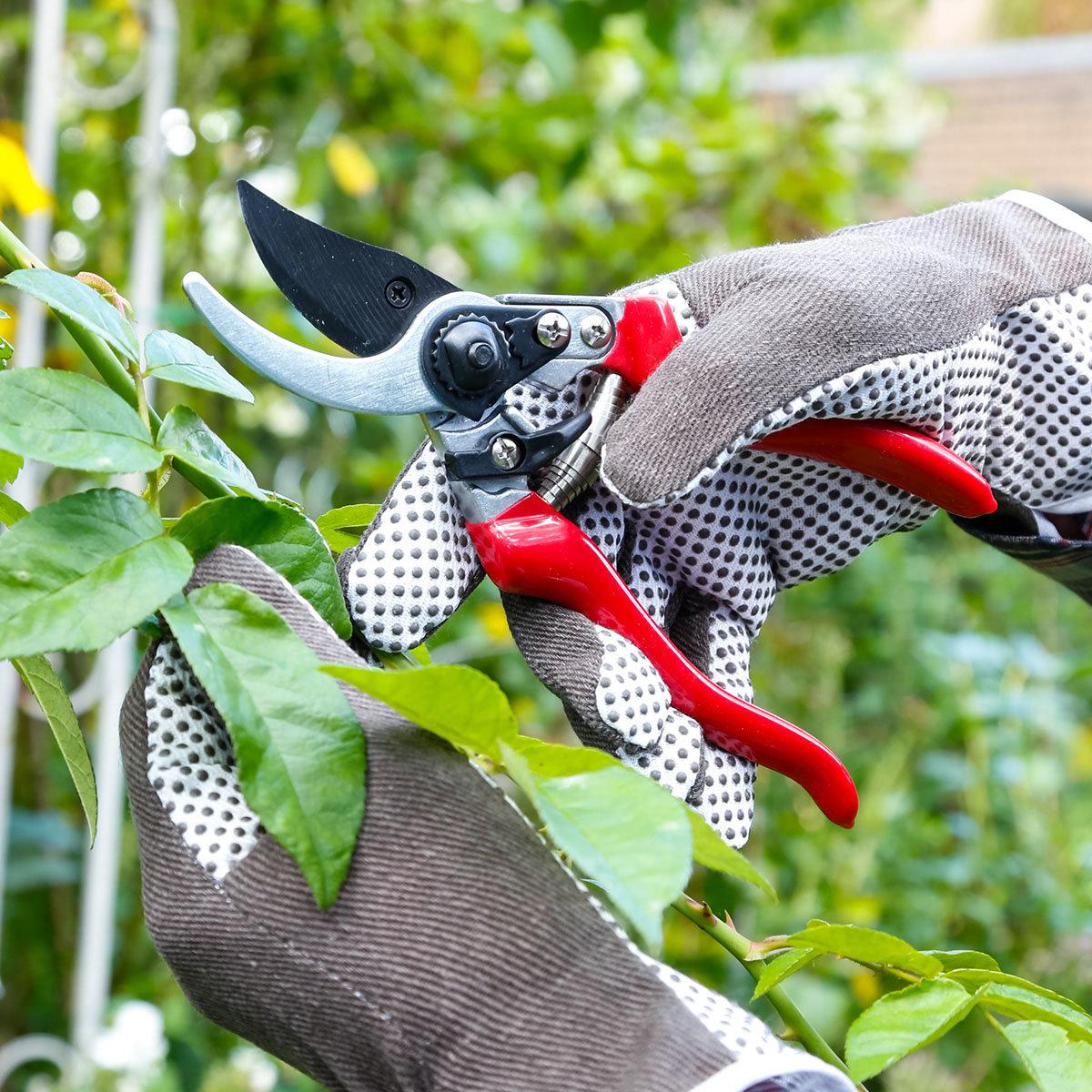 Aluminium-Gartenschere | #2