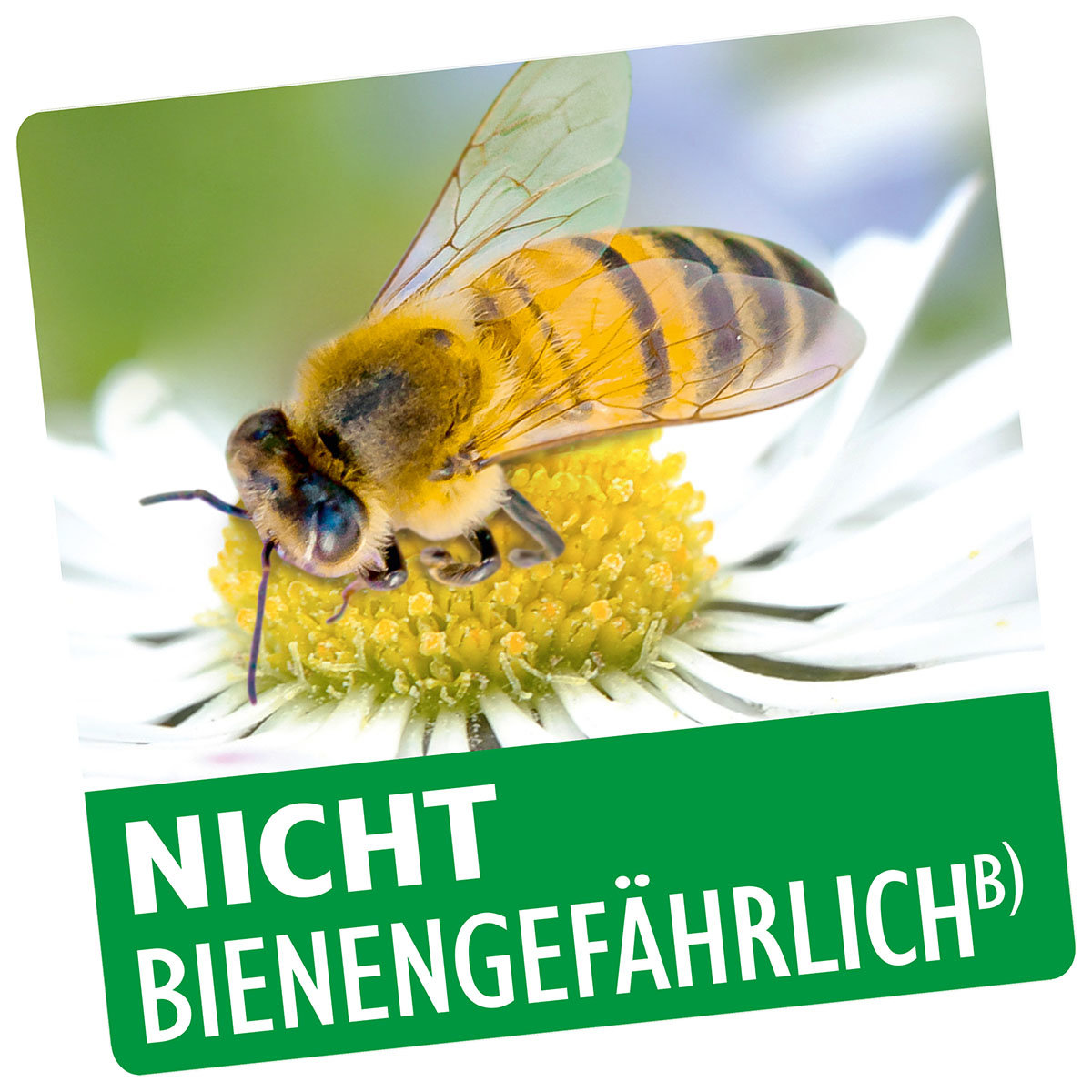 Neudorff Neudosan Neu Blattlausfrei, 500 ml | #2