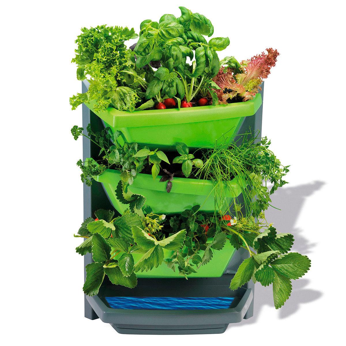 JUWEL Vertical Garden Grundelement, limette | #2