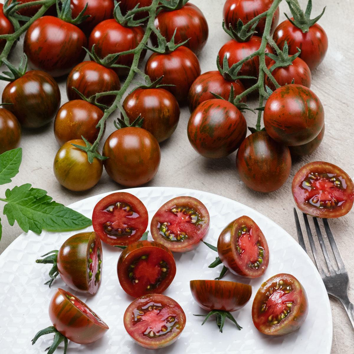 Tomatensamen Tigrino   #2