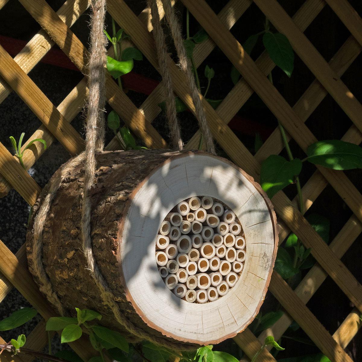 Bienenhotel Baumstamm | #2