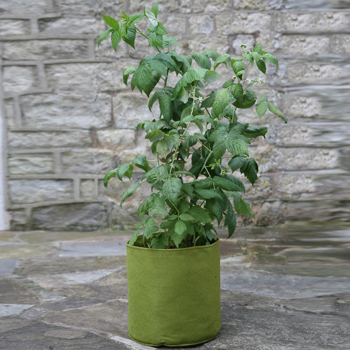 Gemüse Pflanztaschen, 3er-Set, ca. 25x25 cm, 3x10 Liter | #2