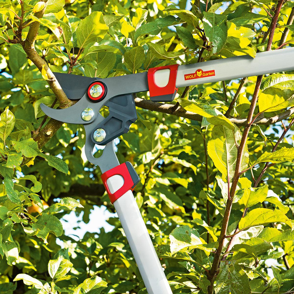 Bypass Astschere Power Cut** RR 750 | #2