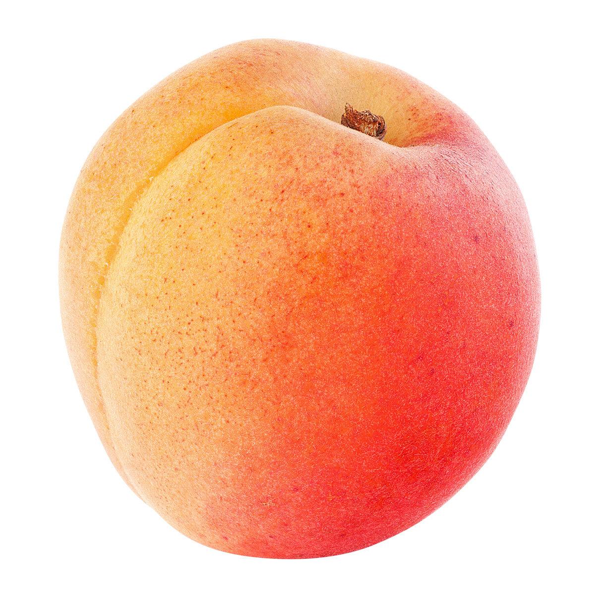 Zwergobst Aprikose Orange Beauty, im ca. 28 cm-Topf | #2