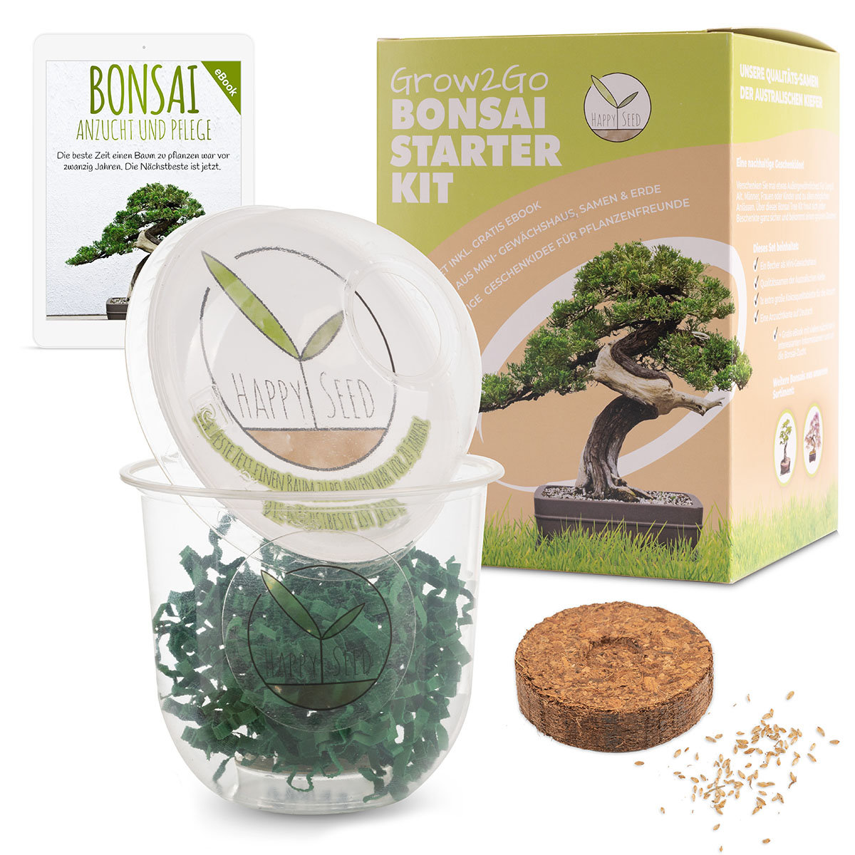 Bonsai Starter Kit Australischen Kiefer Grow2Go   #2