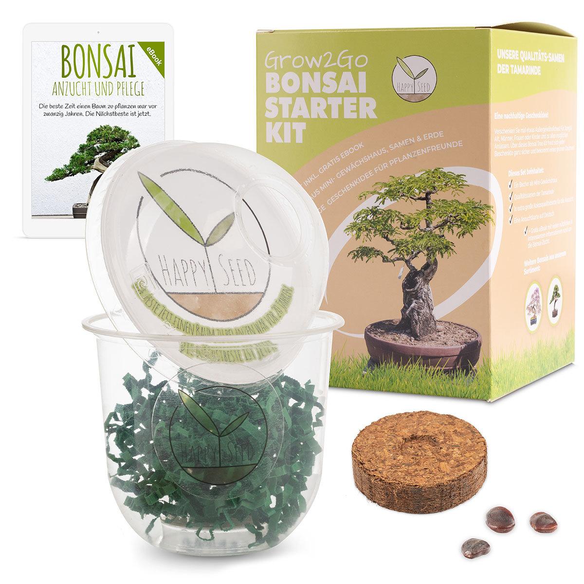 Bonsai Starter Kit Tamarinde Grow2Go | #2