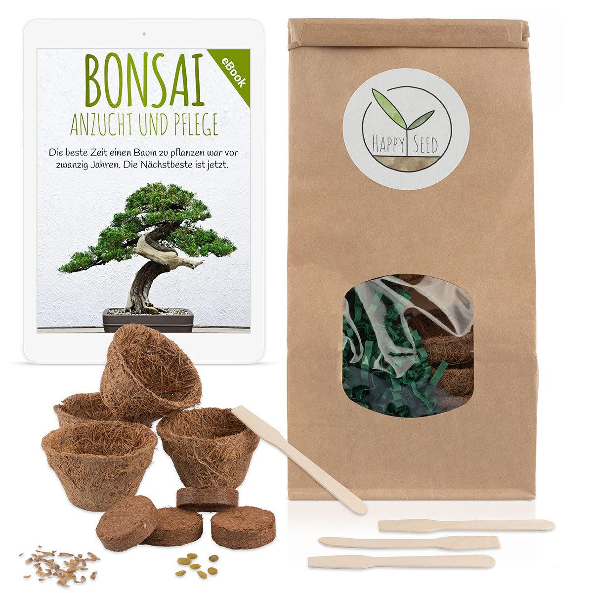 Bonsai Starter Kit Anzuchtset   #2