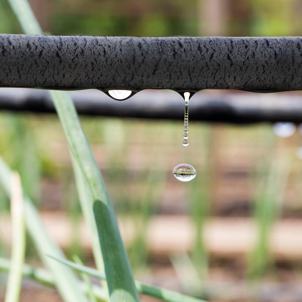 Tropferschlauch-Bewässerungsset | #2