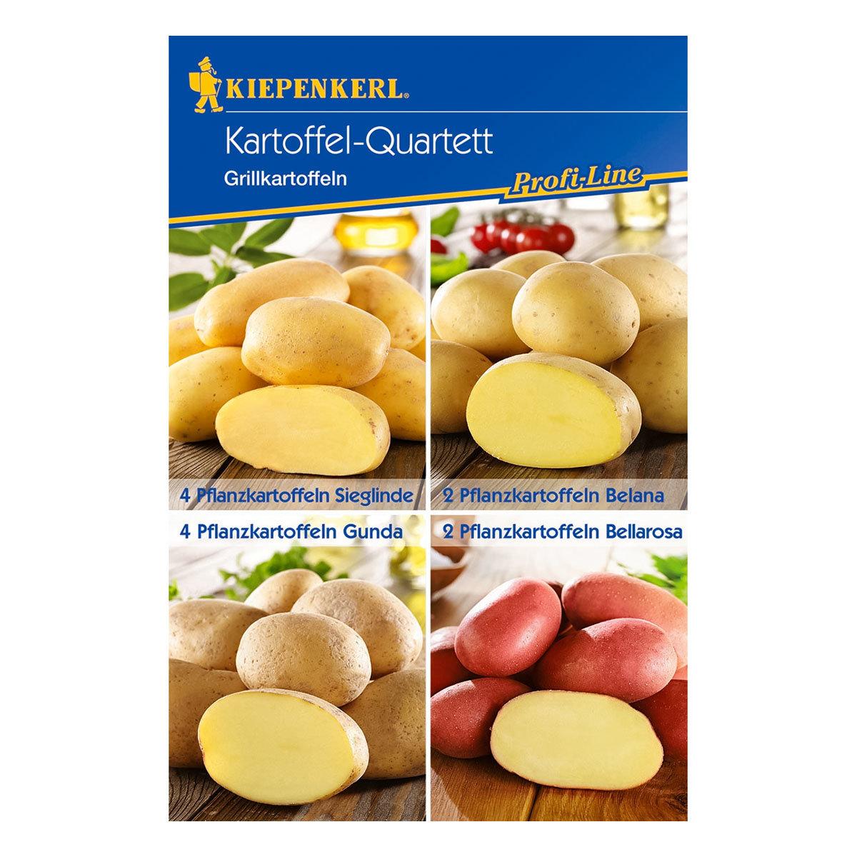 Kartoffel-Quartett Grillkartoffeln, 12 Stück | #2