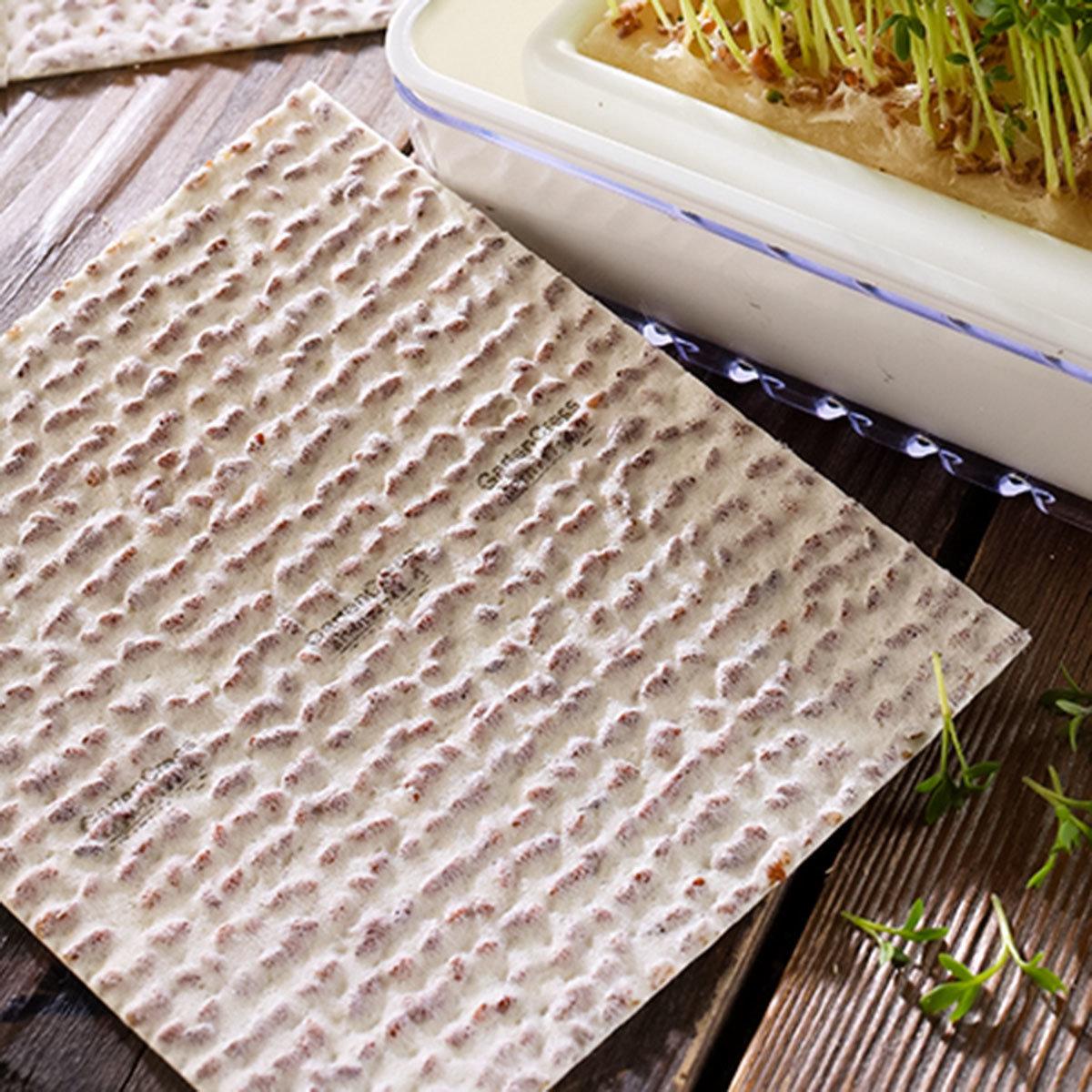 BIO Kresse Nachfüllpads für MicroGreen Duo-Garden, 3 Stück   #2