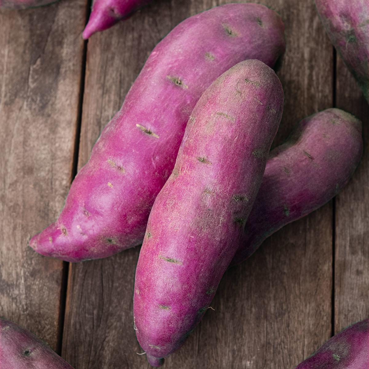 Süßkartoffelpflanze Erato Violet, im ca. 13 cm-Topf   #2