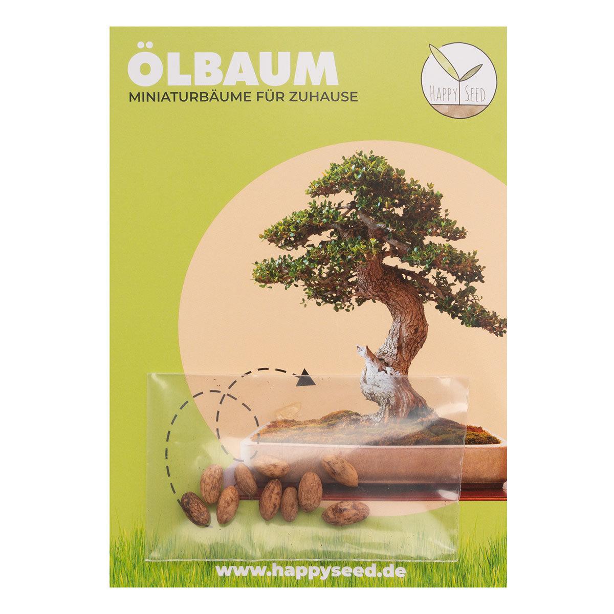 Bonsai Samen Ölbaum   #2