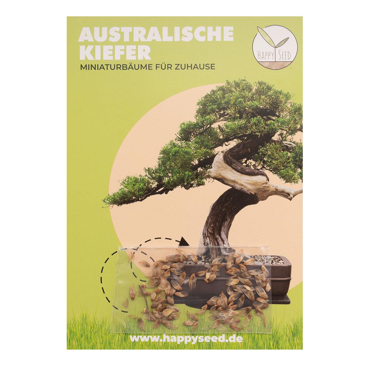 Bonsai Samen Australische Kiefer   #2
