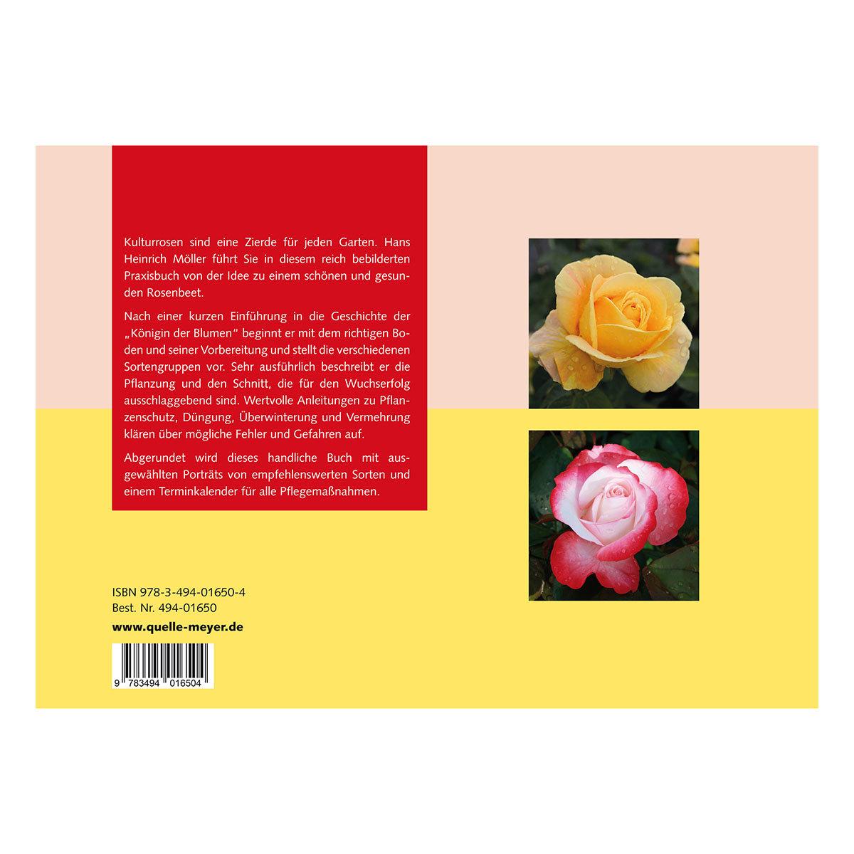 Optimale Rosenpflege in Bildern - Schritt für Schritt zu mehr Erfolg | #2