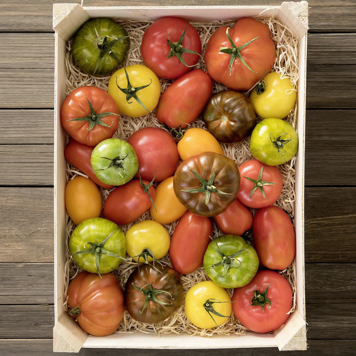 Saatgut-Holzbox Tomaten, 7 BIO-Saatgut-Sorten | #2