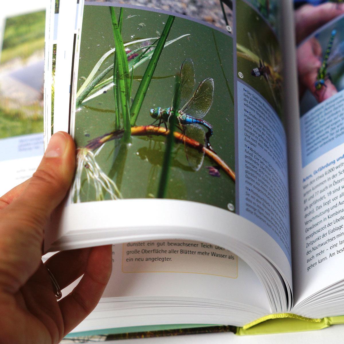 Handbuch Wasser im Garten | #2