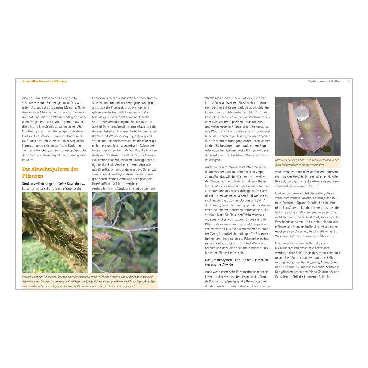 Handbuch Pflanzenschutz im Biogarten | #2