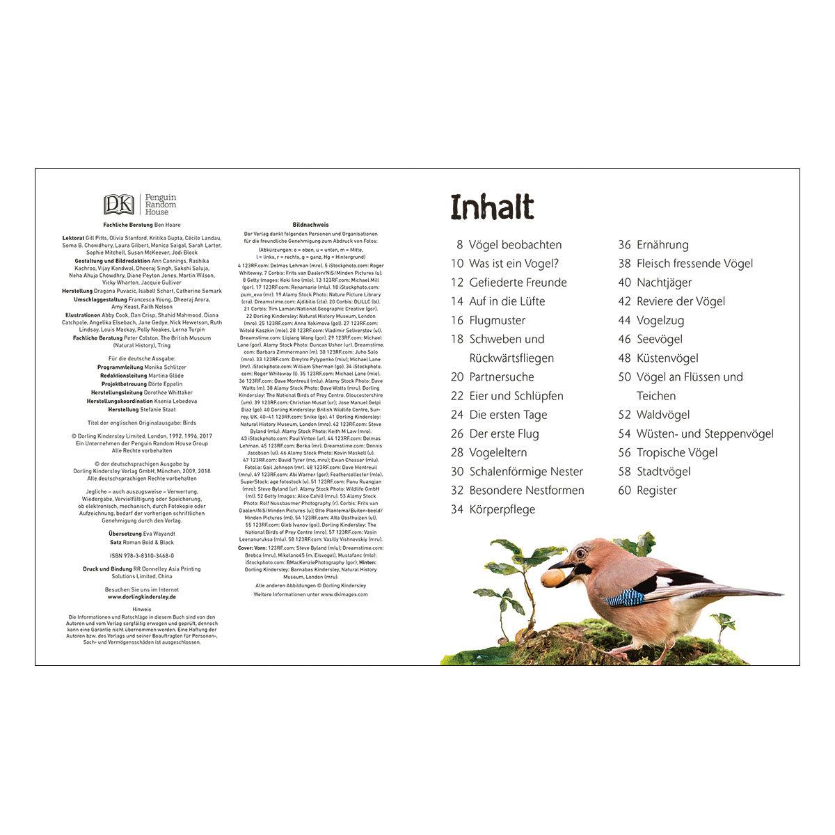Naturführer für Kinder - Vögel | #2