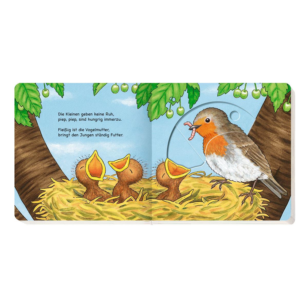 Kleine Wunder der Natur: Vom Ei zum Vogel | #2