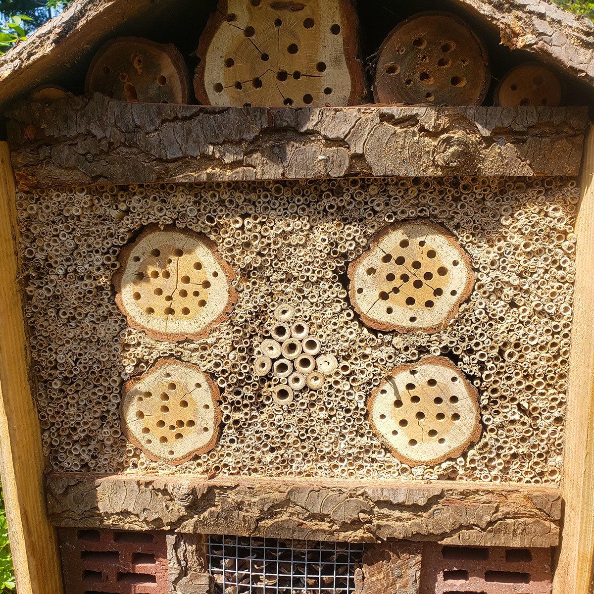 Natur-Insektenhotel | #2
