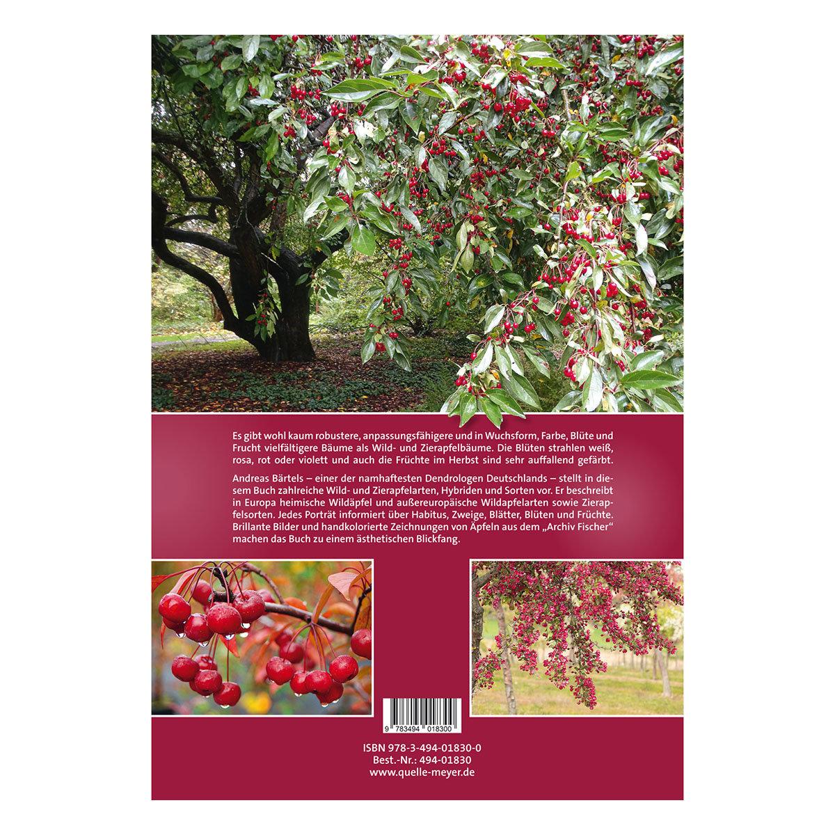 Wild- und Zieräpfel   #2