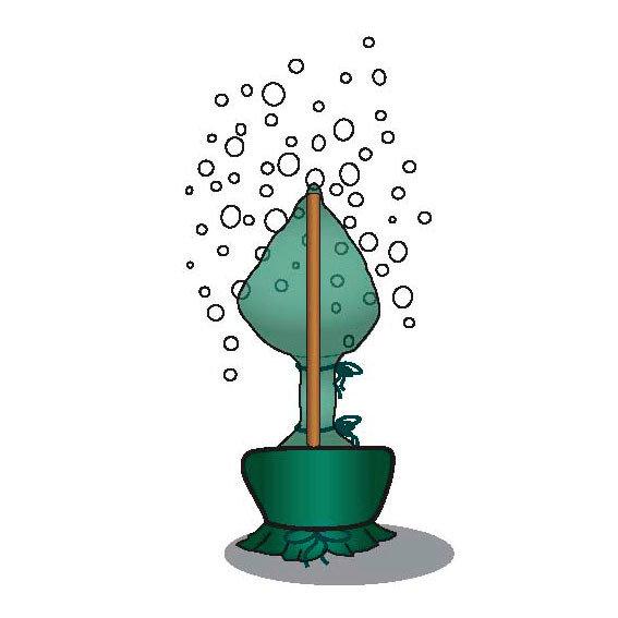 Winterschutz M, olivgrün | #2