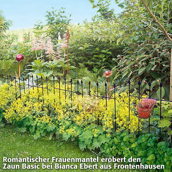 Gartenzaun Basic, 9er-Set | #2
