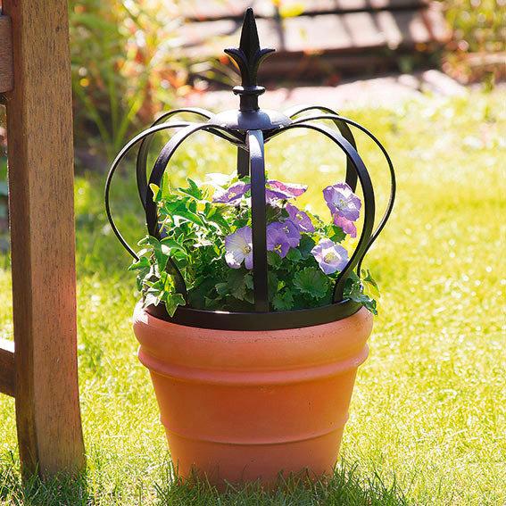 Pflanzen krone royal von g rtner p tschke for Gartendeko neuheiten