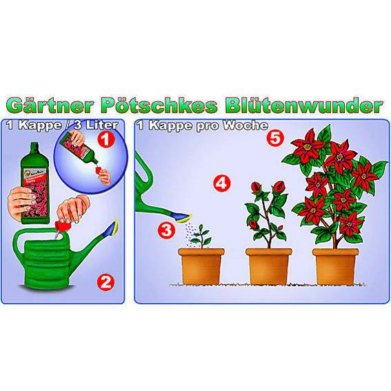 Gärtner Pötschke Blütenwunder flüssig, 1 Liter | #2