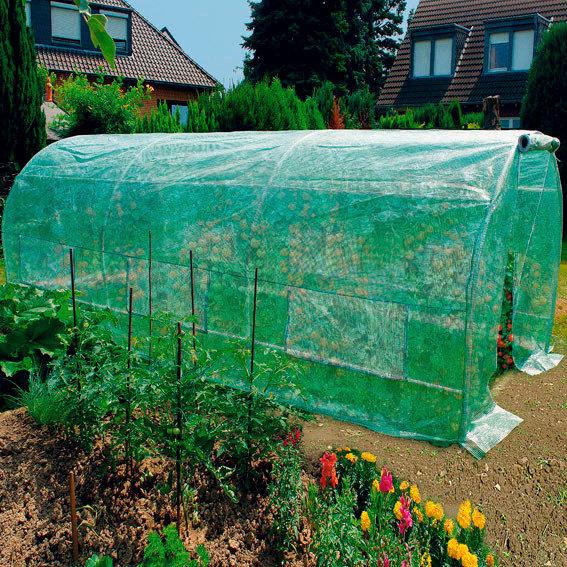 Tomatengewächshaus XXL | #2