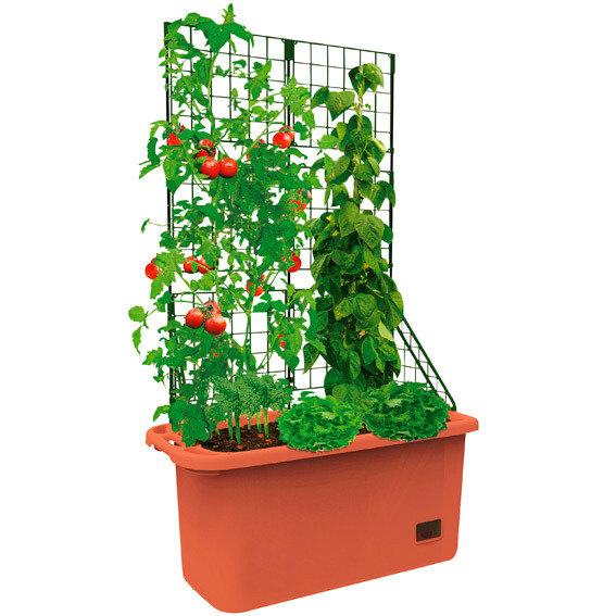 Gemüsepflanzer mit Rankgerüst | #2