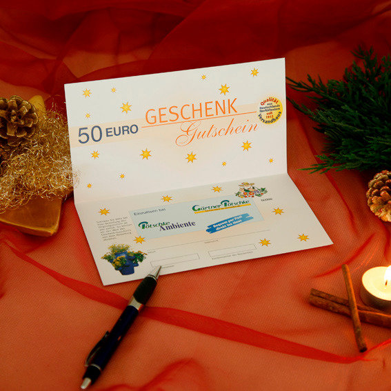 Gärtner Pötschkes Weihnachts-Gutschein 50,- Euro | #2