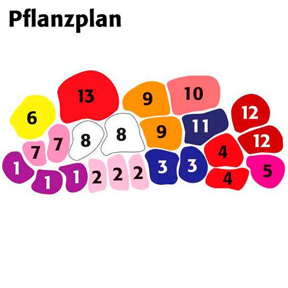 pflanzplan staudenbeet staudenbeet anlegen tipps. Black Bedroom Furniture Sets. Home Design Ideas