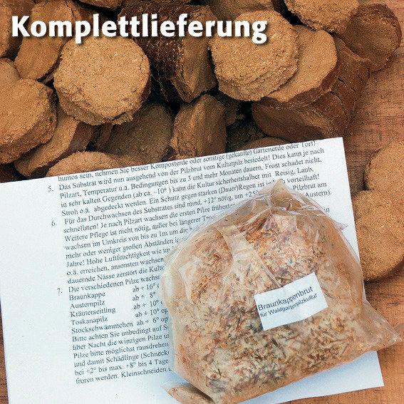 Pilzkultur-Set Braunkappe | #2